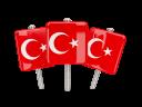 turkey_640 (19)